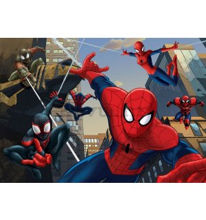 Foto tapeta: Spiderman (2) - 254x368 cm