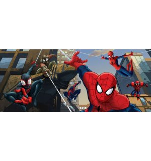Foto tapeta: Spiderman (2) - 104x250 cm