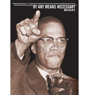 Poster - Malcolm X