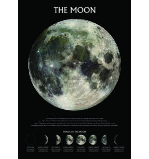 Poster - The Moon