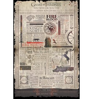 Poster - Game of Thrones (infografika)