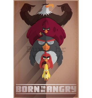Poster - Angry Birds (Born to be Angry)