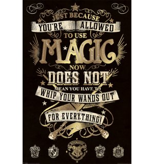Poster - Harry Potter (Magic)