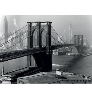 Slika na platnu - Time Life, Brooklyn Bridge, New York 1946