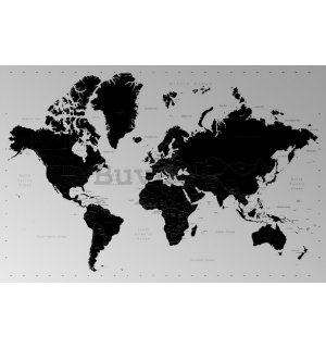 Poster - World Map (Contemporary)