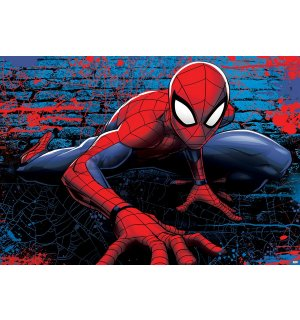 Foto tapeta: Spiderman (5) - 184x254 cm