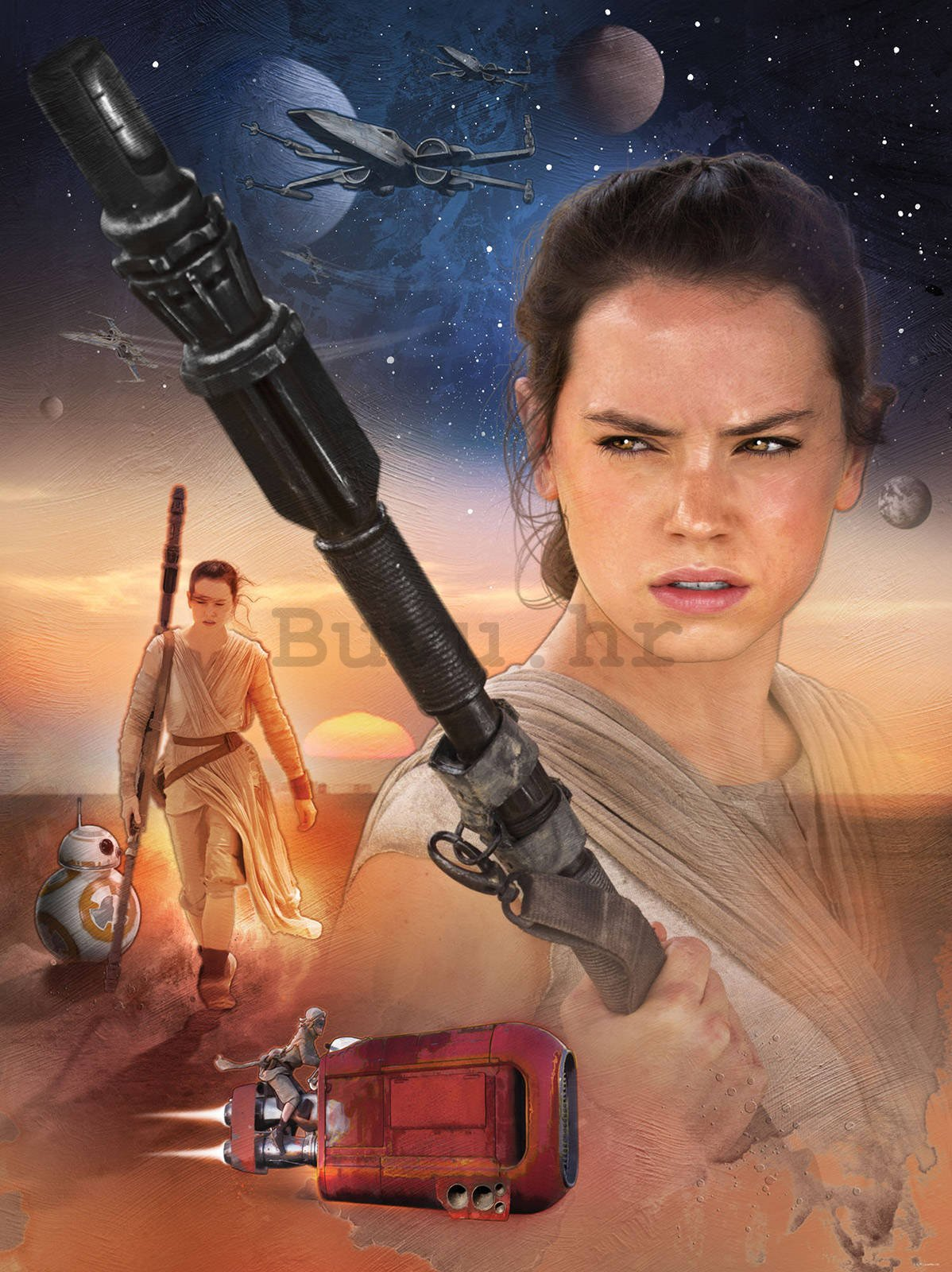 Foto tapeta: Star Wars, Rey - 184x254cm
