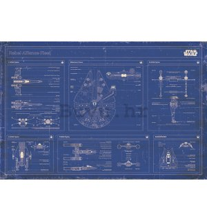 Poster - Star Wars Rebel Alliance Fleet Blueprint